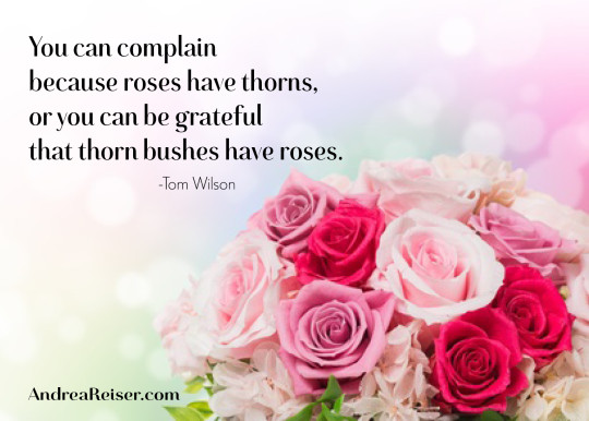 You can complain because roses have thorns, or you can be grateful that thorn bushes have roses