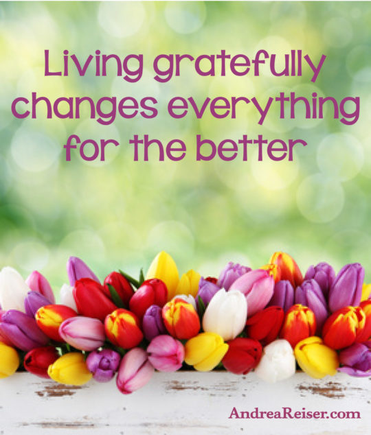 Living gratefully changes everything for the better