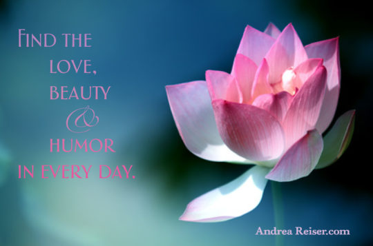 Find the love, beauty & humor in every day (lotus flower)